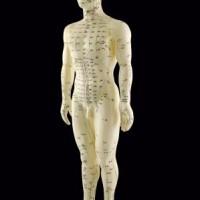 Europas førende akupunkturklinik behandler også for lændesmerter